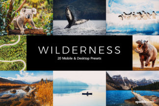 Wildlife Lightroom Presets - 01 7 -