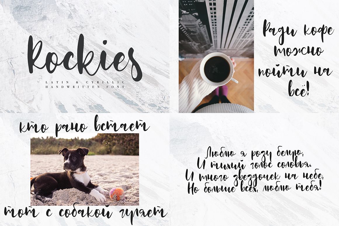 Font Bundle / 70 + IN ONE - 1 65 -