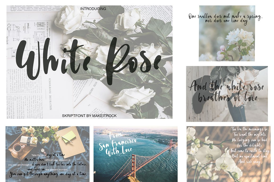 Font Bundle / 70 + IN ONE - 13 -