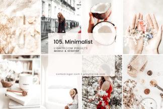 Minimalistic Lightroom Presets - 105.MINIMALIST 1 -