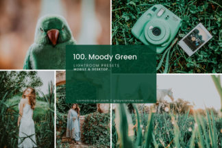 Influencer Lightroom Presets - 100.Moody Green 01 -