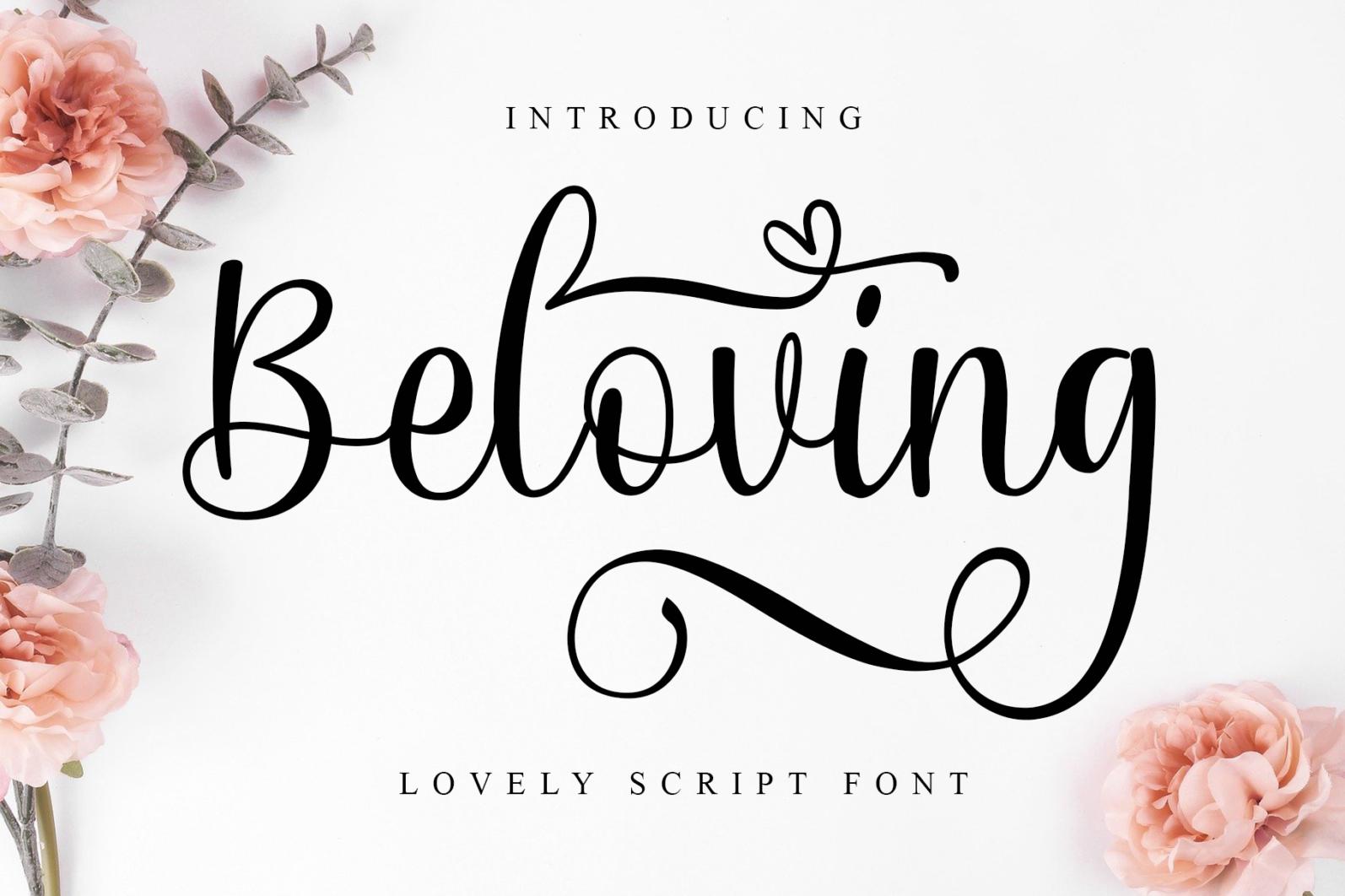 Beautiful Script Font Bundle - 1 91 -