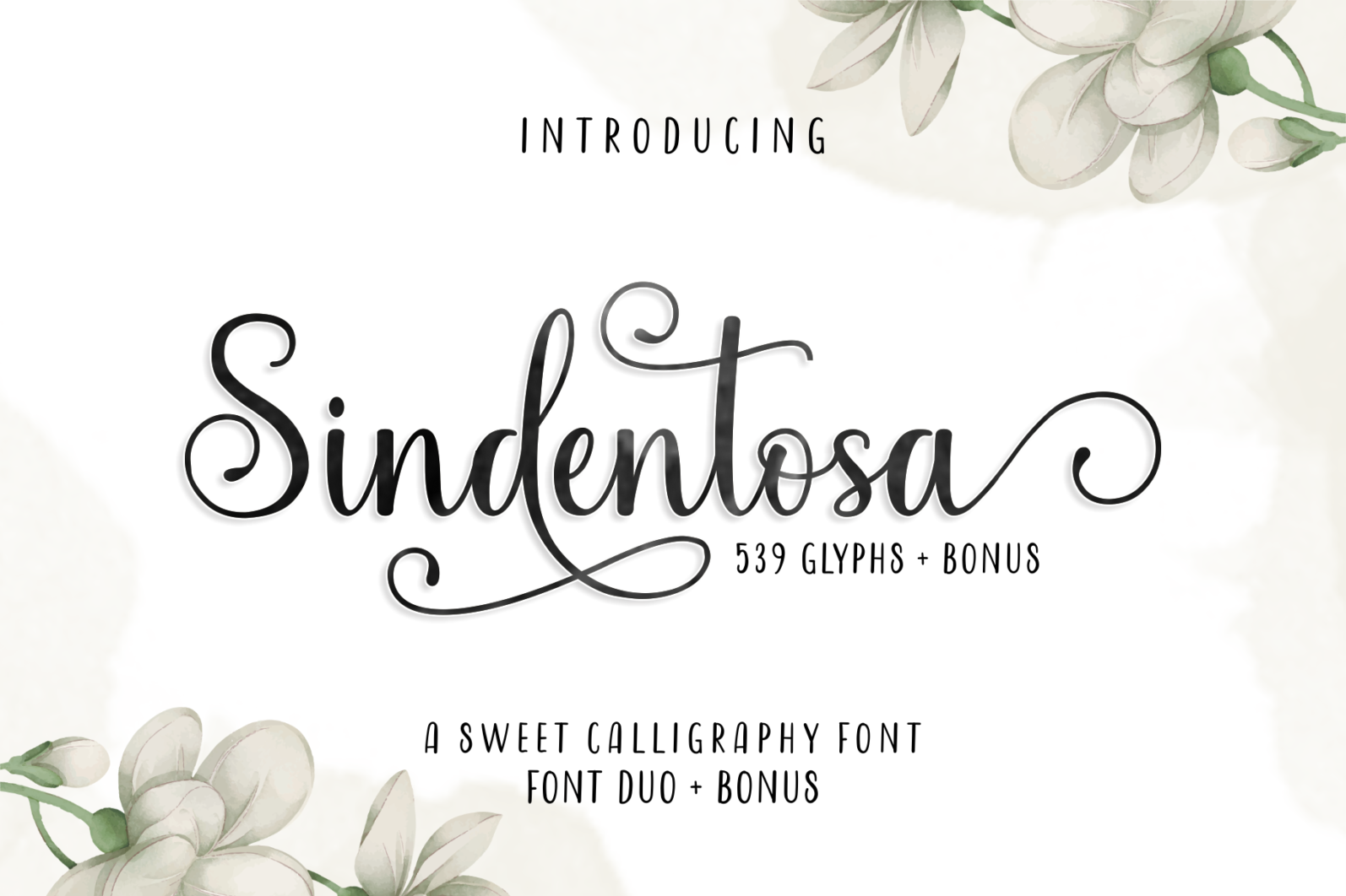 Beautiful Script Font Bundle - 1 92 -