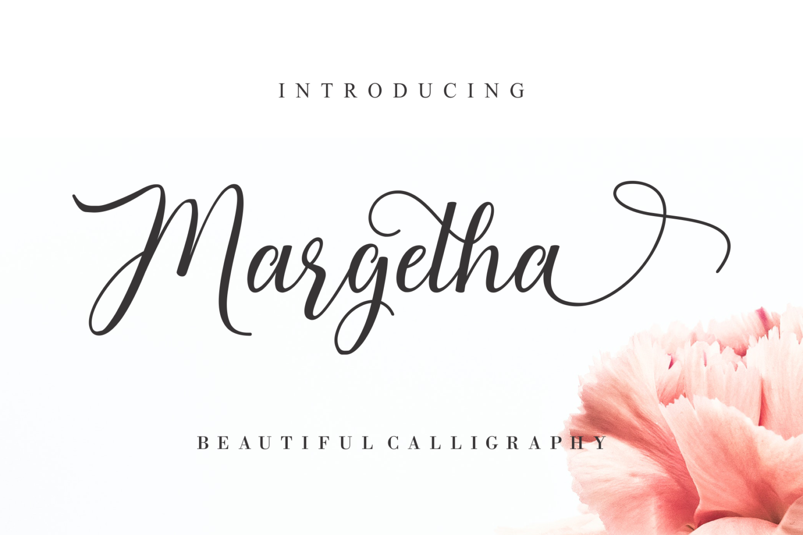 Beautiful Script Font Bundle - Cover -