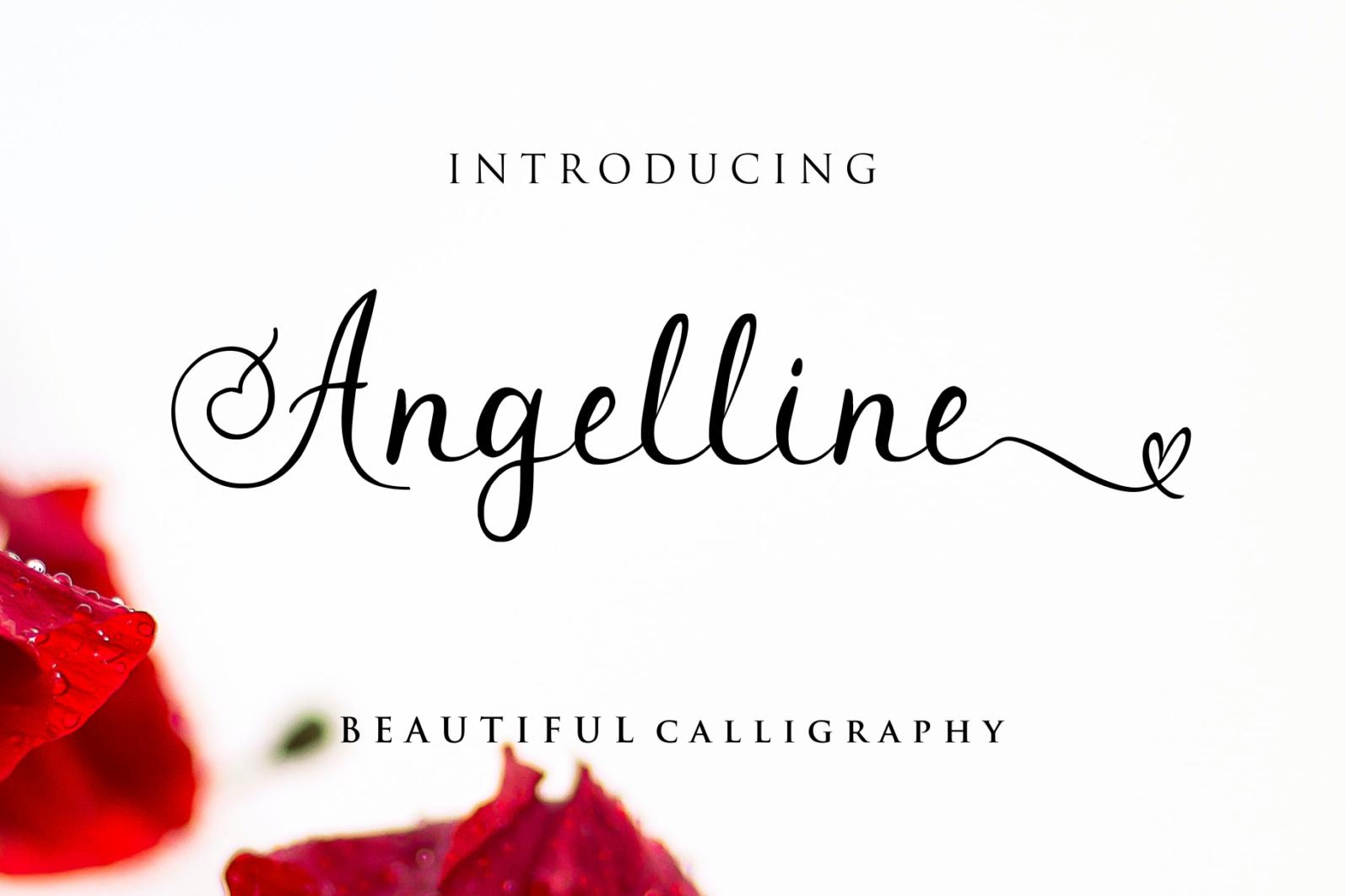Beautiful Script Font Bundle - 1 97 -