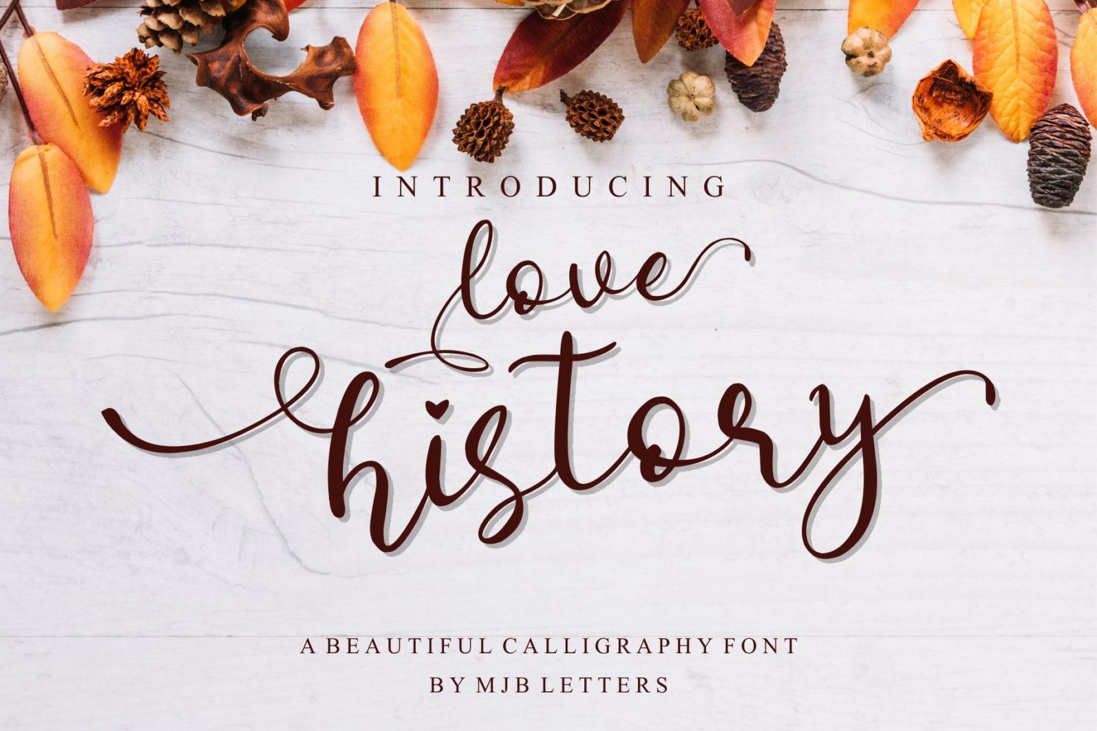 Beautiful Script Font Bundle - 1 133 -