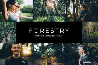 Forest Lightroom Presets - 01 21 -