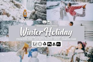 Winter Lightroom Presets - Preview 77 -