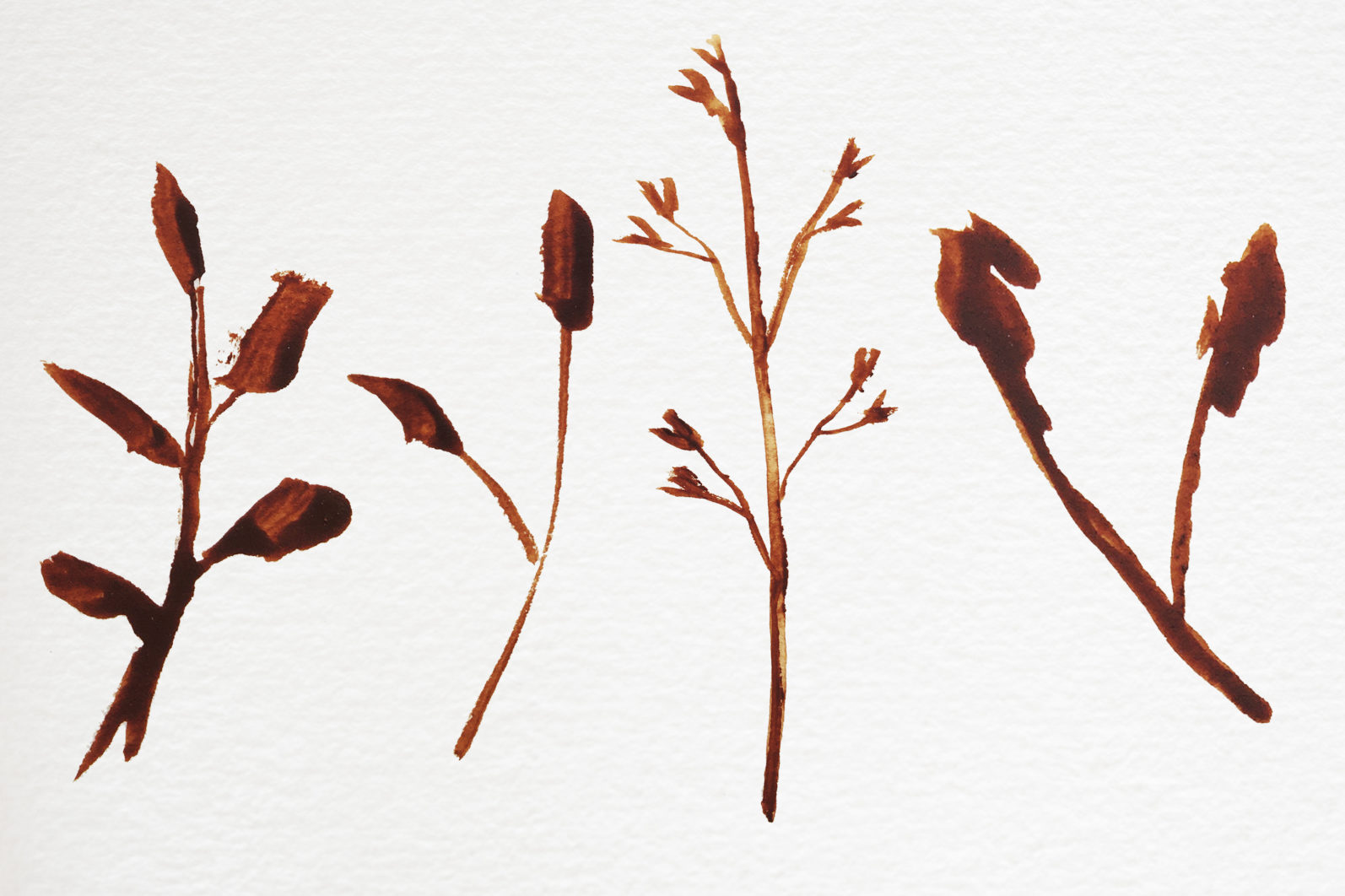 Abstract shape watercolor brown leaves autumn - 03 11 scaled -