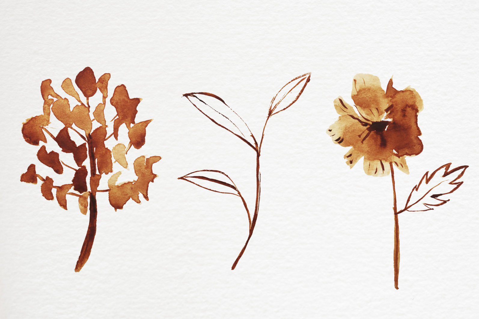 Abstract shape watercolor brown leaves autumn - 07 11 scaled -