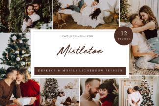 Influencer Lightroom Presets - Mistletoe LR -