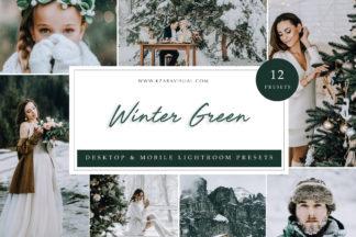 Influencer Lightroom Presets - Winter Green -