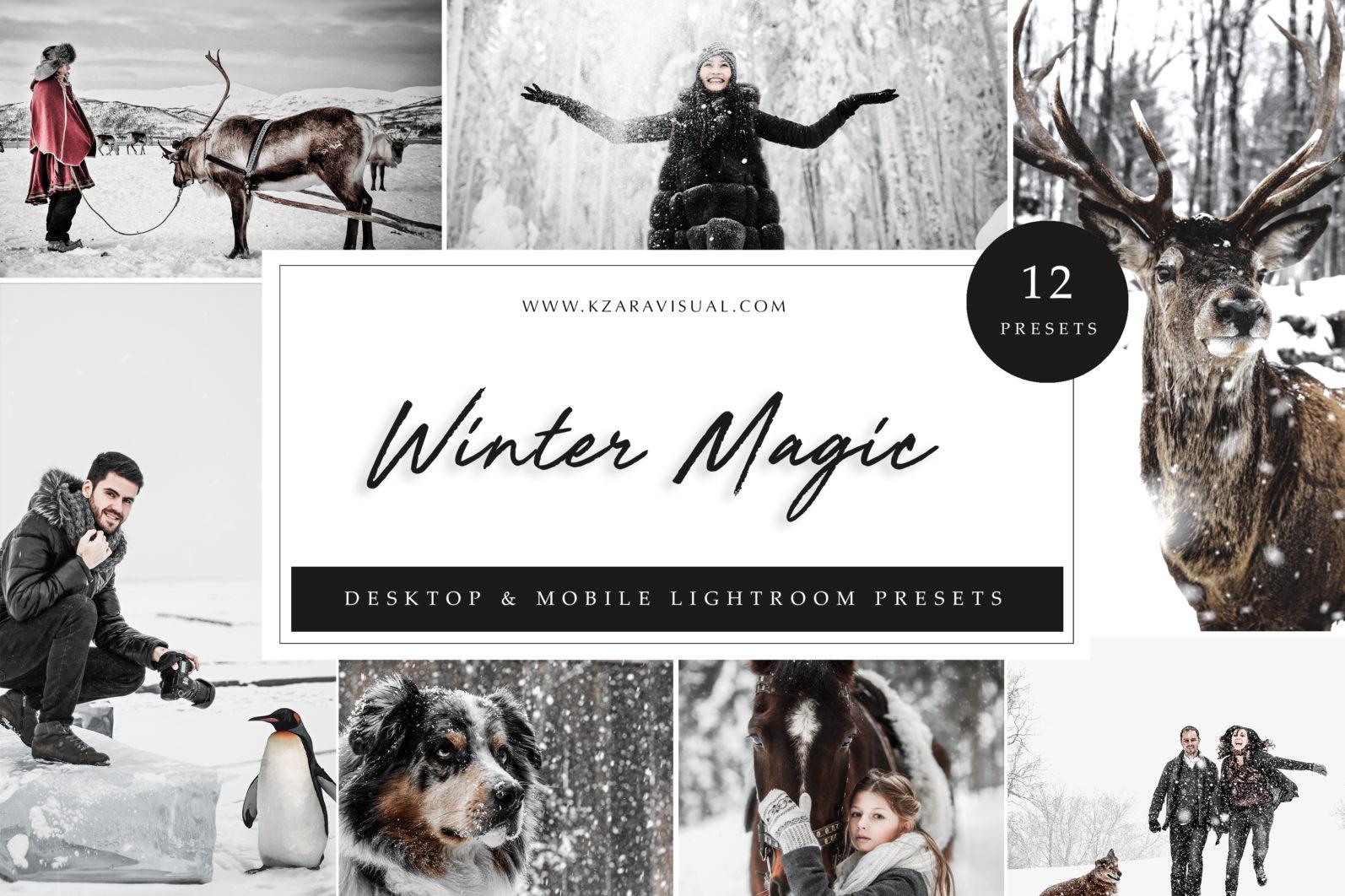 12 x Lightroom Presets, Winter Magic Presets, Outdoor Presets, Gray Tones Presets, Portrait Presets - Winter Magic LR scaled -