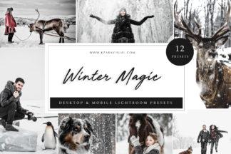 Influencer Lightroom Presets - Winter Magic LR -