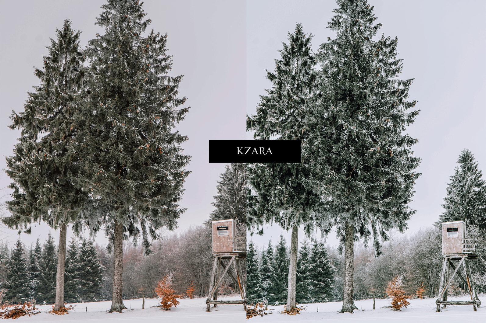 12 x Lightroom Presets, Winter Green Presets, Lanscape Presets, Green Tones Presets - Winter Green Preview 12 -
