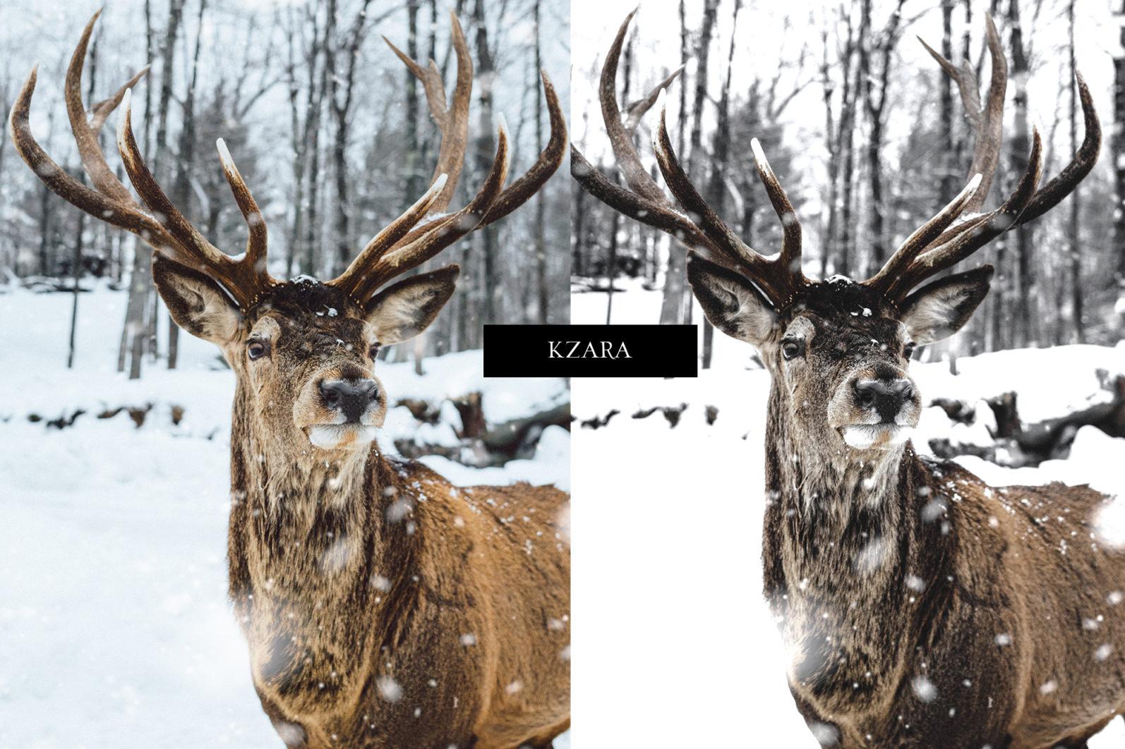 12 x Lightroom Presets, Winter Magic Presets, Outdoor Presets, Gray Tones Presets, Portrait Presets - Winter Magic Preview 3 -