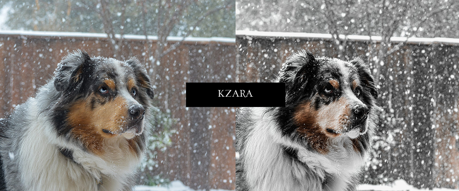 12 x Lightroom Presets, Winter Magic Presets, Outdoor Presets, Gray Tones Presets, Portrait Presets - Winter Magic Preview 6 -