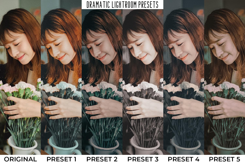101 Moody Lightroom Presets - Preset Preview 1 2 -