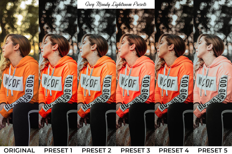 101 Moody Lightroom Presets - Preset Preview 3 1 -
