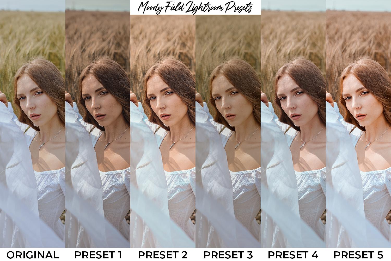 101 Moody Lightroom Presets - Preset Preview 5 -