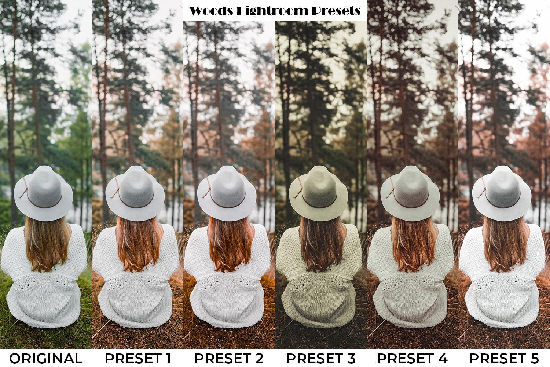 101 Moody Lightroom Presets - Preset Preview 9 -