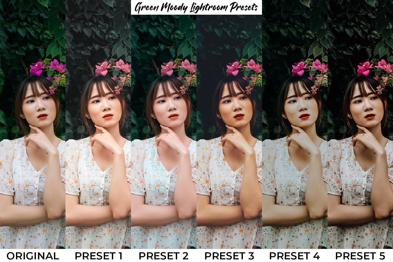 101 Moody Lightroom Presets - Preset Preview 11 -