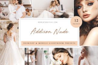 Mobile Lightroom Presets - Addison Nude LR -