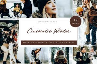 Mobile Lightroom Presets - Cinematic Winter LR -