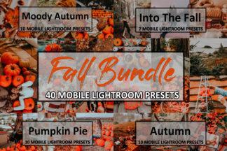 Spring Lightroom Presets - fall bundle -