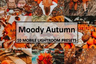 Spring Lightroom Presets - moodyautumn 1 -