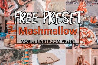 Free Lightroom Presets - mashmallow -