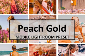 Free Lightroom Presets - Peach Goldd -
