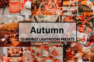 Spring Lightroom Presets - Autumn Preset 1 -