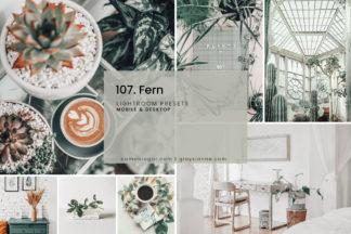 Mother Lightroom Presets - 107. Fern 01 -