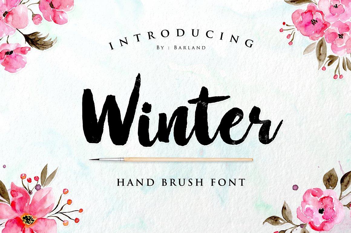 BIG PACKAGE - Font Bundle - 90% Off - 12 Winter Brush -