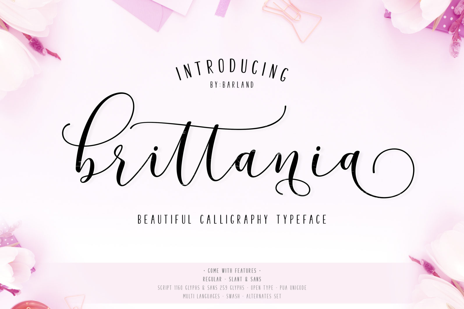 BIG PACKAGE - Font Bundle - 90% Off - 14 Brittania Script scaled -