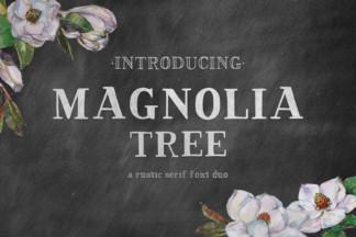 Font Deals - Powerful Script & Calligraphy Fonts for just $1 - magnolia tree serif -