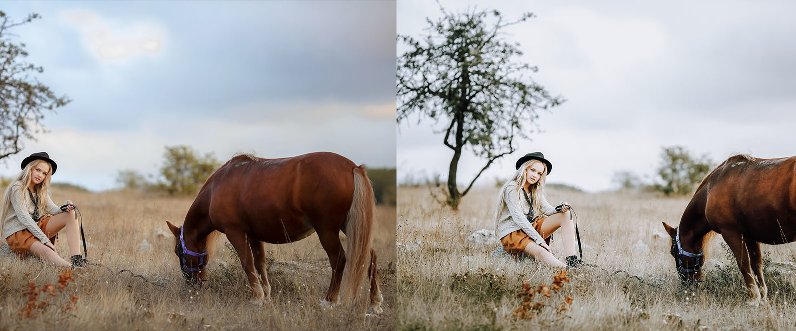 12 x Lightroom Presets, Country Living Presets, Portrait Presets, Green Shades Presets, Outdoor - 3 Country Living -
