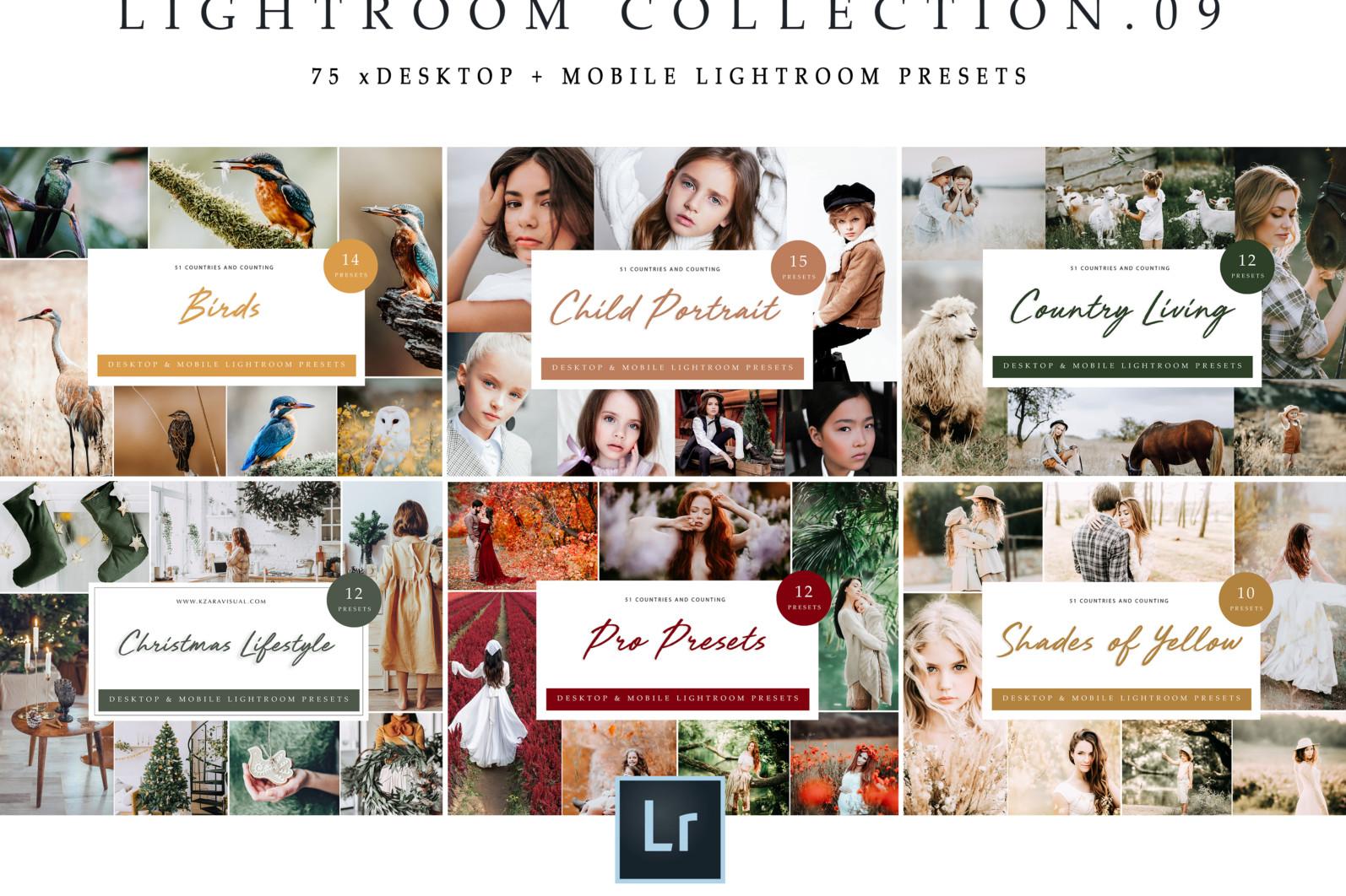 BUNDLE /// 281 x Lightroom Presets for Desktop // 24 Packs // Desktop and Mobile - Lightroom Collection 09 1 scaled -