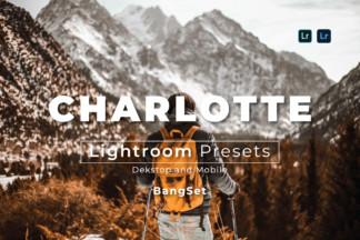 Minimal Lightroom Presets - thumbnail filtergrade -