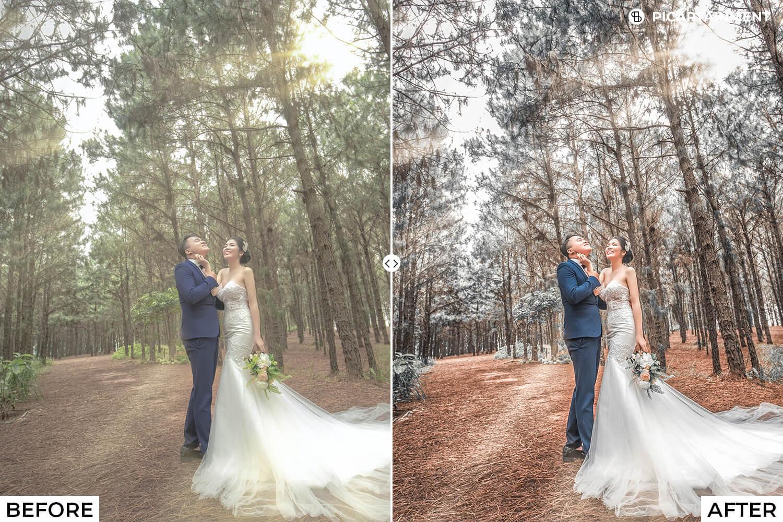 101 Wedding Premium Lightroom Presets - comparision 12 -