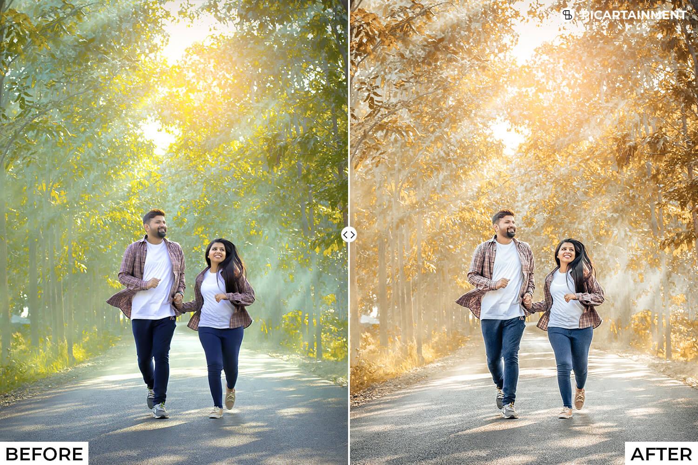 101 Wedding Premium Lightroom Presets - comparision 18 -