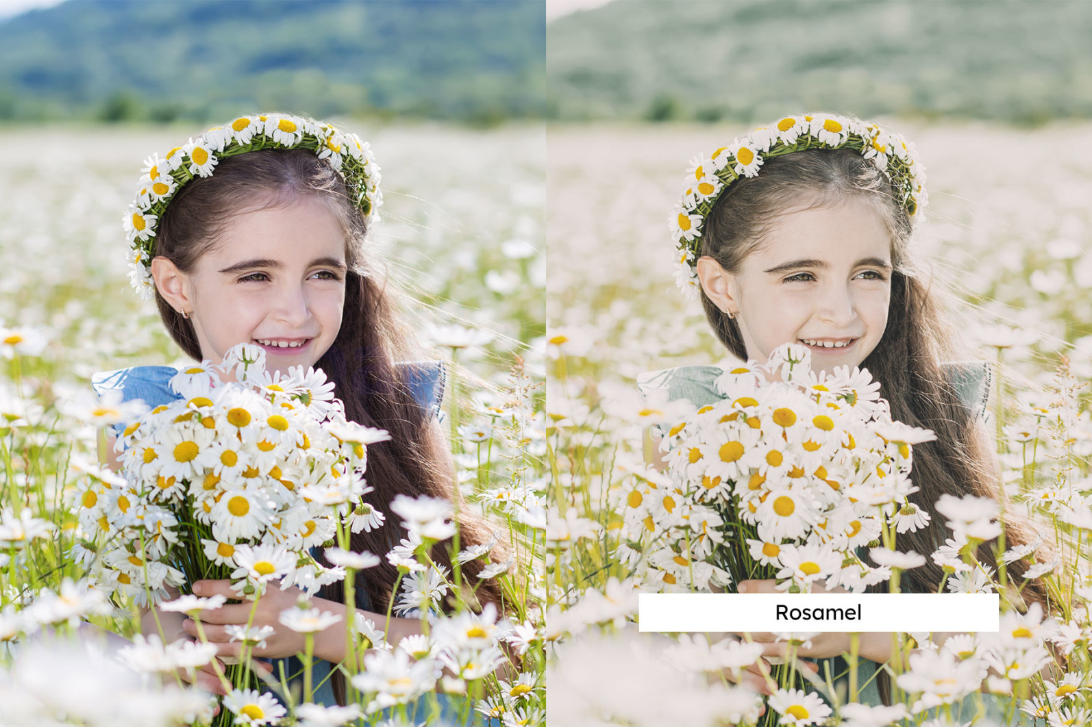 20 Chamomile Lightroom Presets and LUTs - 05 9 -