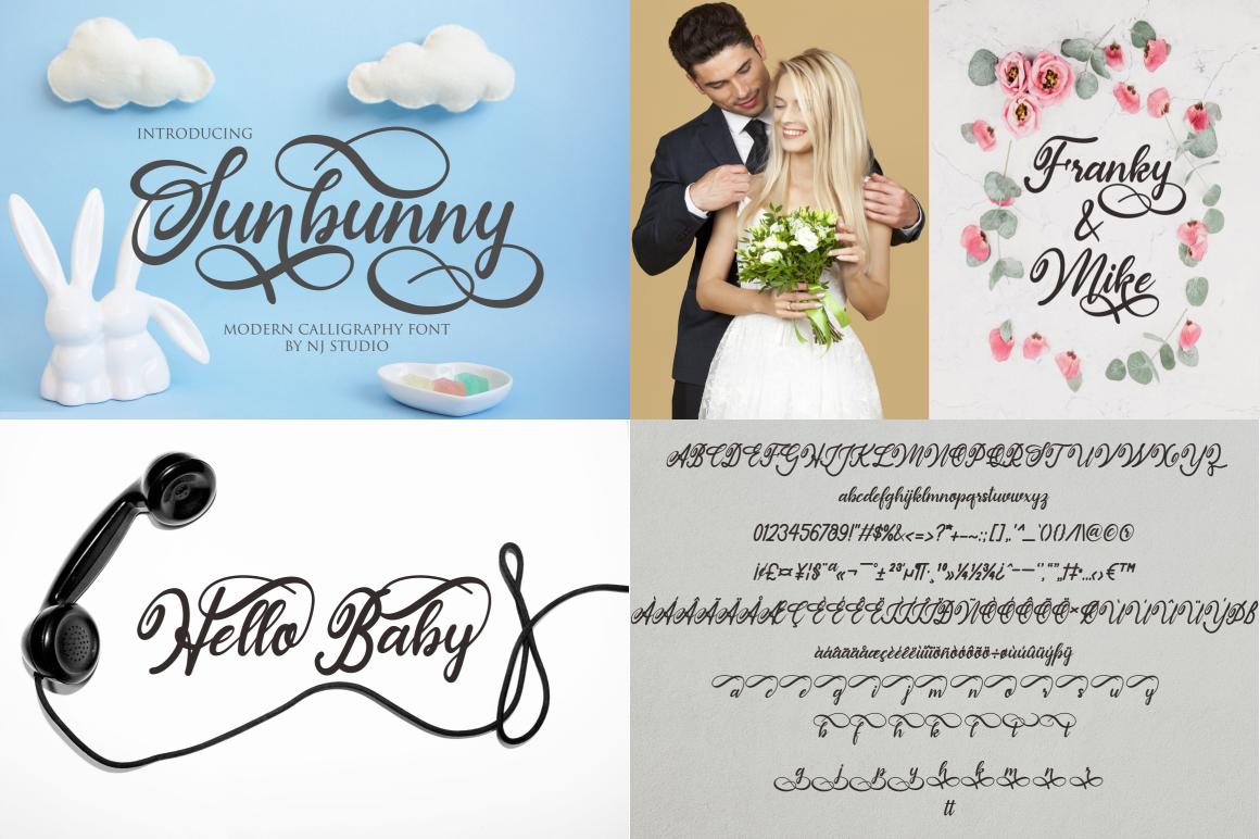 Swashy Font Bundle - Font Bundle 34 -