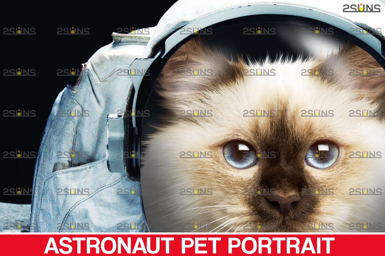 Astronaut Pet portrait template, & Digital pet art, Pet painting , Pet portrait, space royal pet - 003 27 -