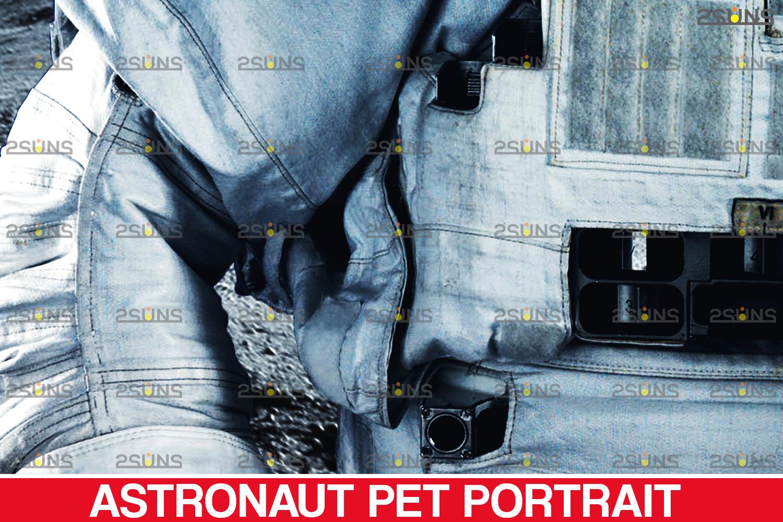Astronaut Pet portrait template, & Digital pet art, Pet painting , Pet portrait, space royal pet - 005 23 -