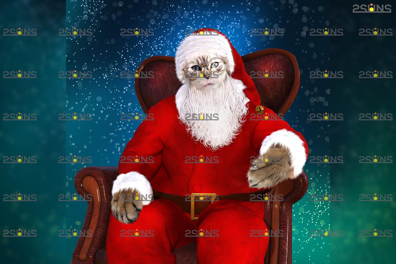 Santa Pet portrait template & Santa overlay, Christmas digital backdrop, Digital Pet - 002 24 -