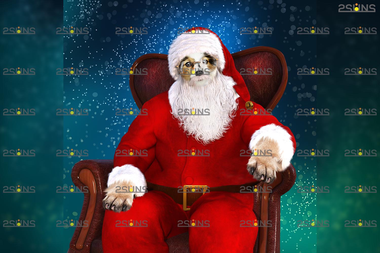 Santa Pet portrait template & Santa overlay, Christmas digital backdrop, Digital Pet - 003 28 -