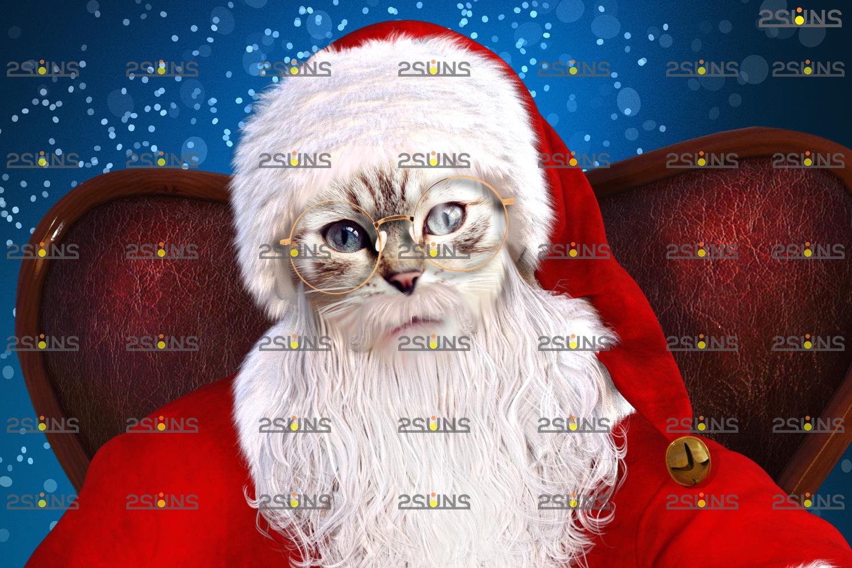 Santa Pet portrait template & Santa overlay, Christmas digital backdrop, Digital Pet - 004 24 -