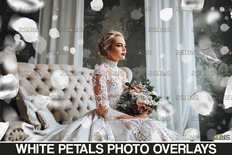 Flower overlay & Photoshop overlay: Floral digital backdrop, Flower overlay, Falling white petal png - 001 65 -